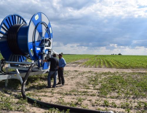 Водні ресурси України, їх споживання та темпи застосування для зрошення та поливу в сільському господарстві