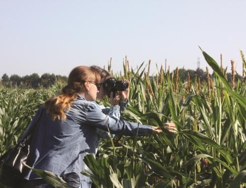 «Кращий молодий агроном 2019»: оновлений формат