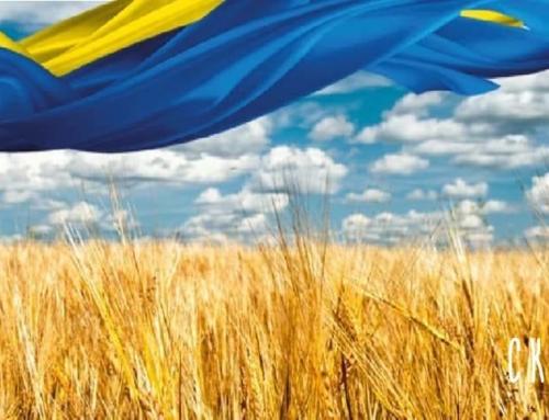 З Днем Прапора та Днем Незалежності України!